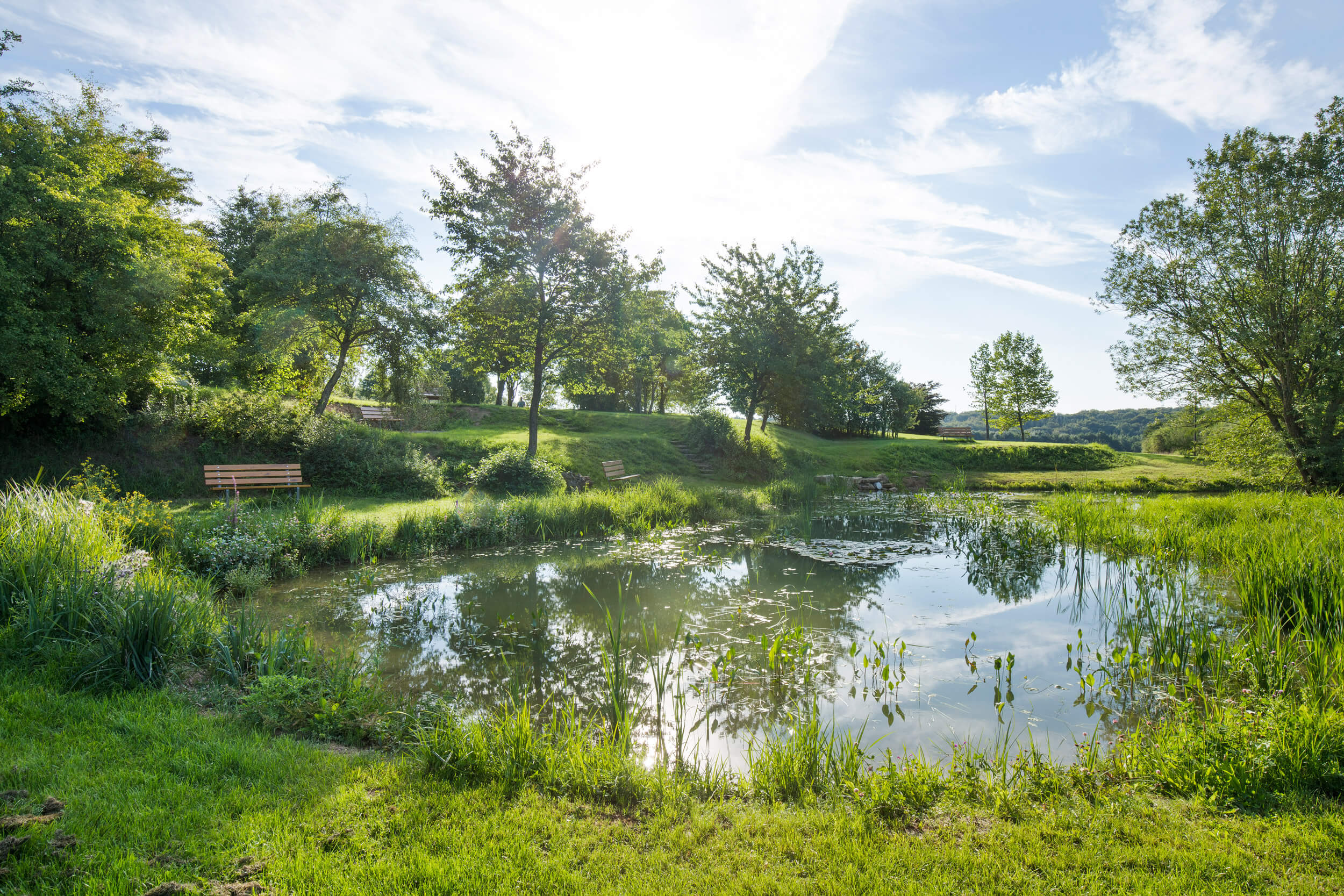 Revitalisierte Teichanlage Parc-Kaltreis
