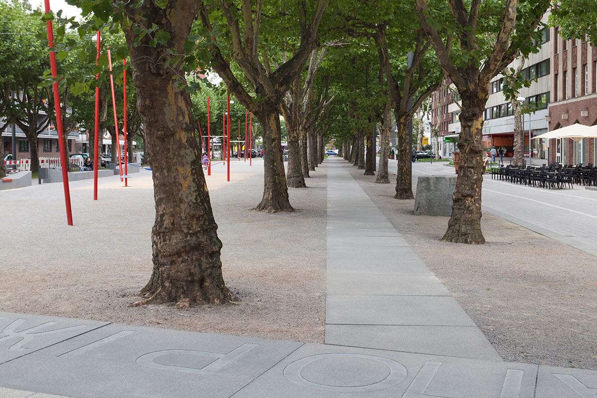 Platanen Allee Saporoshje Platz