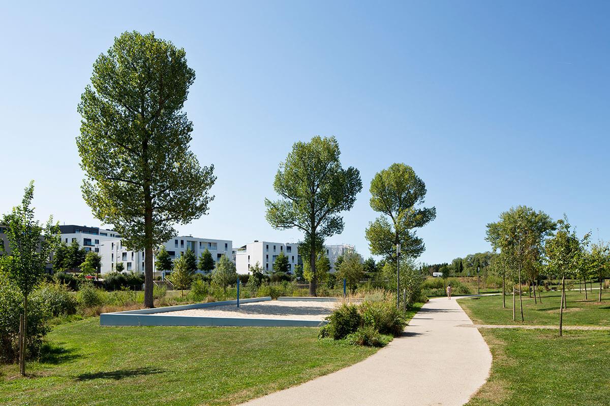 Volleyballfeld Cessinger Park